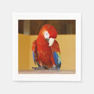 Roter Macaw Serviette