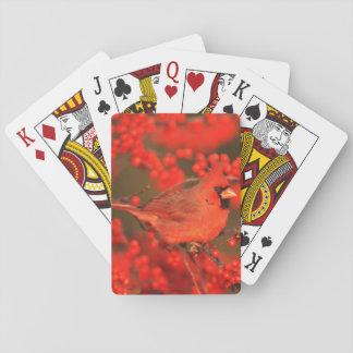 Roter NordKardinals-Mann, IL Pokerdeck