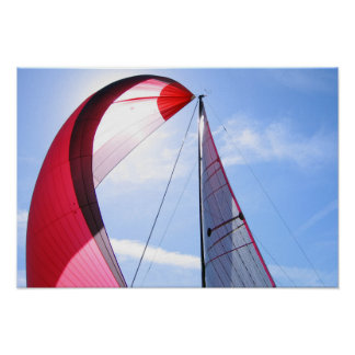 Roter Spinnaker mit Sun Poster