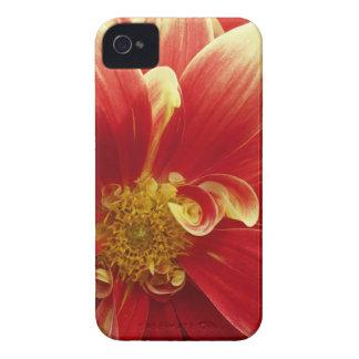 Roter Zinnia iPhone 4/4S Kasten u. Case-Mate iPhone 4 Hüllen