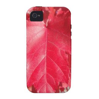 Rotes Blatt Vibe iPhone 4 Hülle