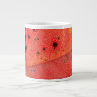 Rotes Blatt-Makro Jumbo-Mug