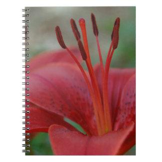 Rotes Blumennotizbuch Spiral Notizblock