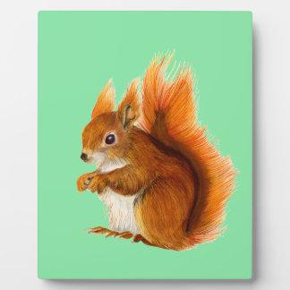 Rotes Eichhörnchen gemalt in der Fotoplatte