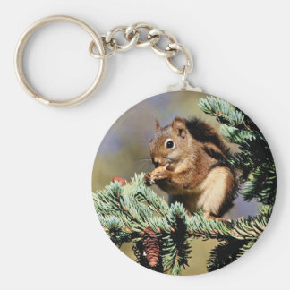 Rotes Eichhörnchen Standard Runder Schlüsselanhänger