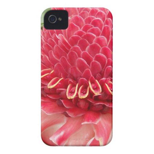 Rotes Flower.jpg iPhone 4 Etuis