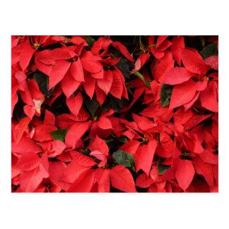 Rotes hübscher Weihnachtsfeiertag der Postkarte