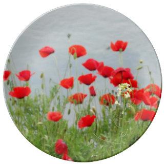 Rotes Mohnblumen-Blumen-Foto-dekorative Porzellanteller