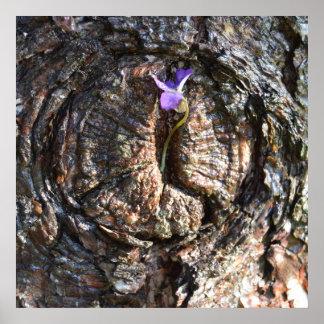 Runde Kiefern-Baum-Barken-u. Blumen-Natur-Kunst Poster