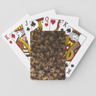 Russische Honigbienen (API mellifera) Spielkarten