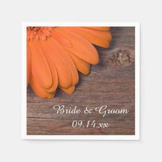 Rustikales orange Gänseblümchen und Servietten
