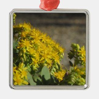 Saftige Pflanze mit gelben Blumen Quadratisches Silberfarbenes Ornament