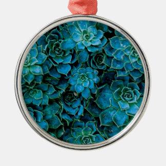 Saftige Pflanzen Rundes Silberfarbenes Ornament