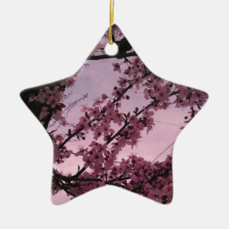 Sakura.jpg Keramik Stern-Ornament