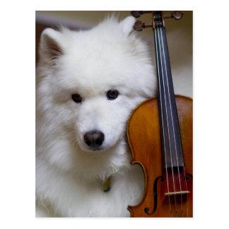 Samoyed-Hund mit Violinen-Postkarte Postkarten