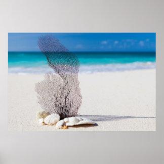 Sand-Seekorallen-archivalisches Schwergewichts- Poster
