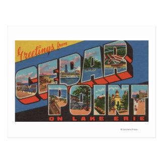 Sandusky, Ohio - der Eriesee - Zedern-Punkt Postkarte
