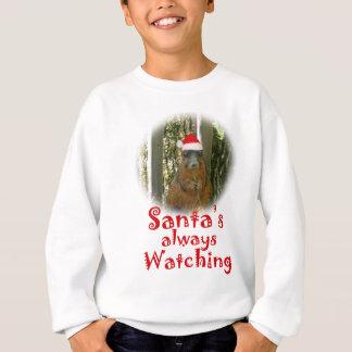 Sankt-Eichhörnchen passt immer auf Sweatshirt