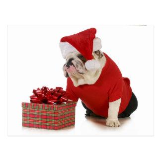 Sankt-Hund - englische Bulldogge gekleidet wie Postkarte