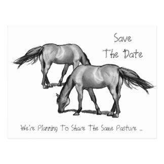 Save the Date: Zwei Pferde: Erhalten Hitched Postkarte