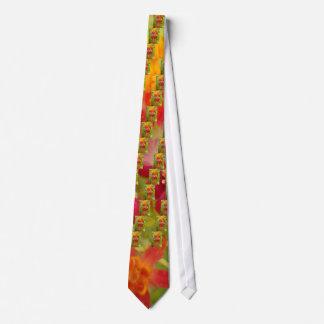 Schaffen Sie Ihr eigenes reizendes buntes Individuelle Krawatten