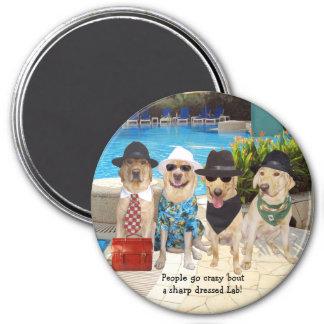 Scharfes gekleideter Labrador-Magnet Runder Magnet 7,6 Cm