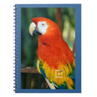 Scharlachrot Macaw- Spiral Notizblock