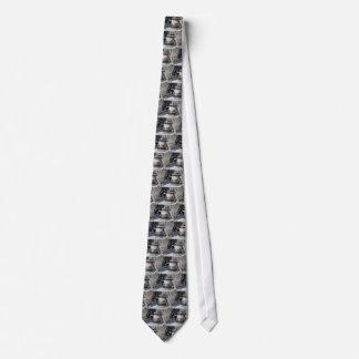 Schiffspoller- und Liegeplatzseile auf Krawatte