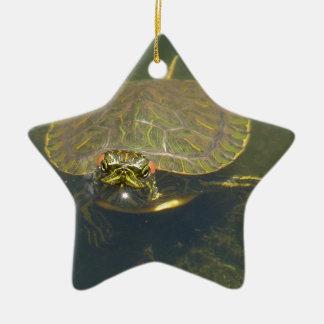 Schildkröte Keramik Ornament