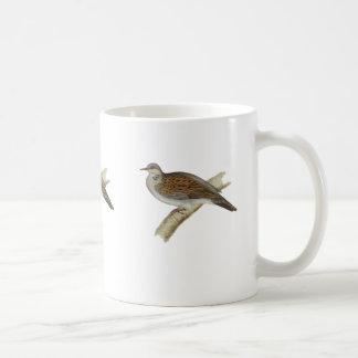 Schildkröte-Taube Kaffeetasse