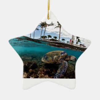 Schildkröte, welche die Strand-Felsen kreuzt Keramik Ornament