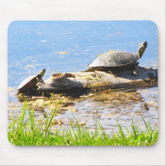 Schildkröten Mousepad