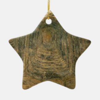 Schildpatt-Natur-Foto Keramik Stern-Ornament