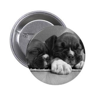 Schlafenboxer-Welpenknopf Buttons