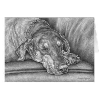 Schlafendobermann-Hund, der durch Kelli Schwan Karte