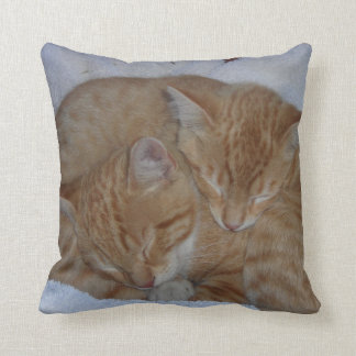 Schläfrige Katzen Kissen