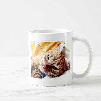 Schläfriges Kätzchen Tasse