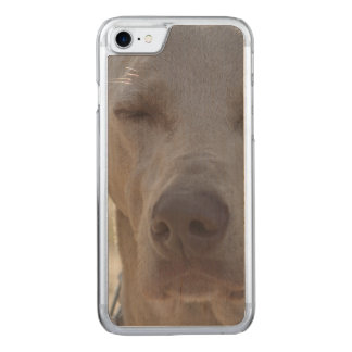 Schläfriges Weimaraner Carved iPhone 8/7 Hülle