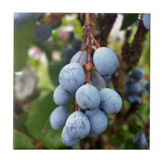 Schlehdornfrucht Keramikfliese