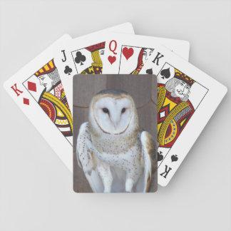 Schleiereule-Foto Spielkarten