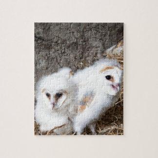 Schleiereule-Küken in einem Nest Puzzle