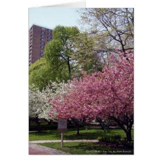 Schließlich Frühling Karte