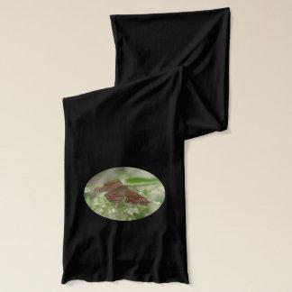 Schmetterling Arizonas Metalmark Schal
