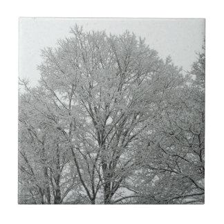 Schnee bedeckte Bäume Kleine Quadratische Fliese
