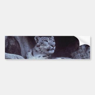 Schnee-Leopard Autoaufkleber