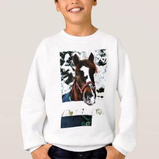 Schnee-Schönheit Sweatshirt