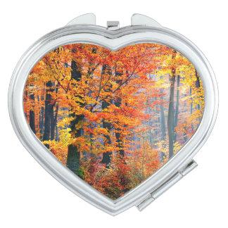 Schöne bunte Herbstfall-Waldsunbeams Schminkspiegel