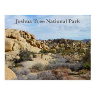 Schöne Joshua-Baum-Postkarte! Postkarte