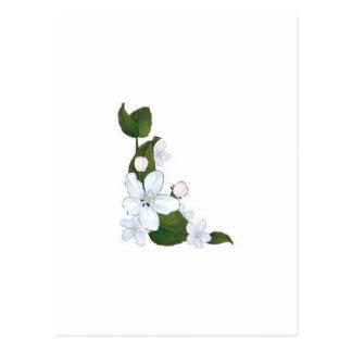 Schöne Lotos-Blume Postkarte