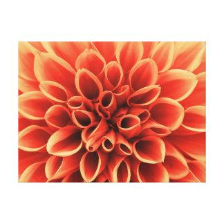 Schöne orange Dahlie-Blume Leinwanddruck
